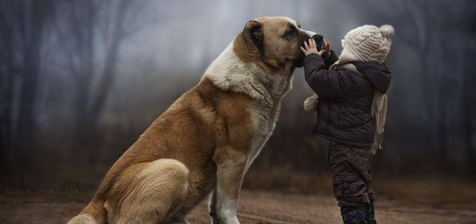 Fotografii superbe: prietenia dintre copii și animale