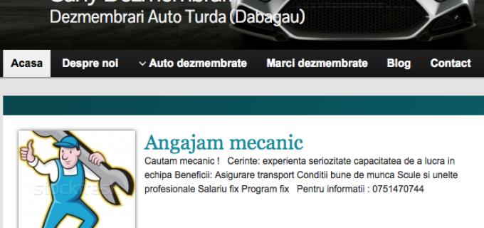 Sany Dezmembrari Turda, angajeaza mecanic auto