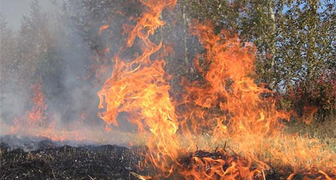 Arderea vegetației uscate poate să vă aducă amenzi mari!