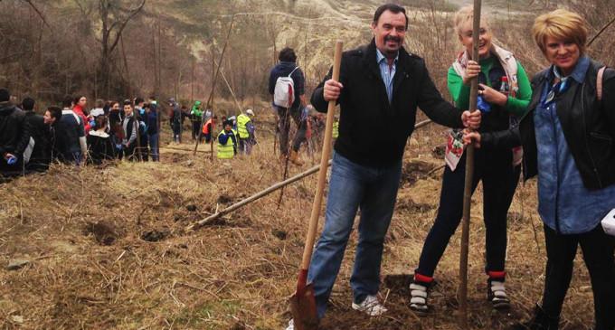 Primăria Turda mulțumește participanților la acțiunea de plantare de copaci