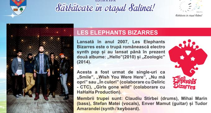 Spectacole ZMT15: Les Elephants Bizarres