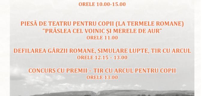 ZMT 2015: Vizite ghidate la Castrul Roman pentru publicul larg