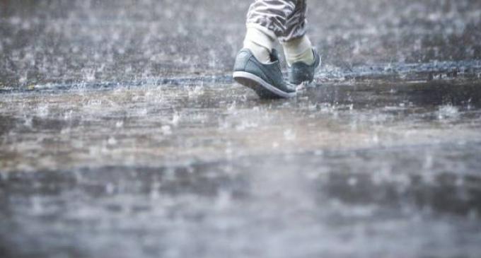 Informare meteorologică: ploi însemnate cantitativ, ninsori și intensificări ale vântului la munte
