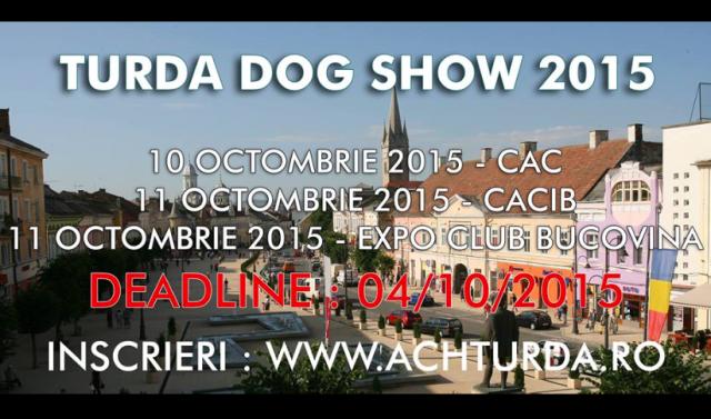 dog show turda