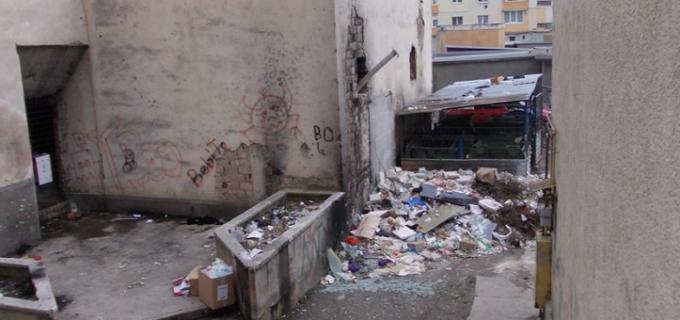 Autoritățile organizează din nou o acțiune de salubrizare a cinematografului din oprișani