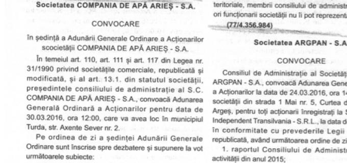 CAA: Consiliul Local Turda nu are calitatea de autoritate tutelară față de operatorul economic Compania de Apă Arieș