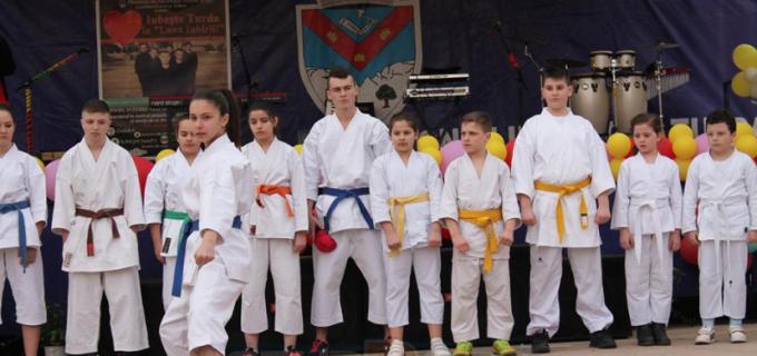 Medalii de aur și argint pentru sportivii Clubului Samurai Turda la început de an