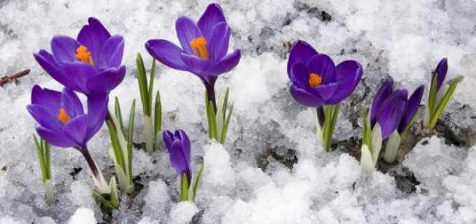 Avertizare meteo de frig in toata tara. Temperaturi negative pana in 18 Martie 2016.