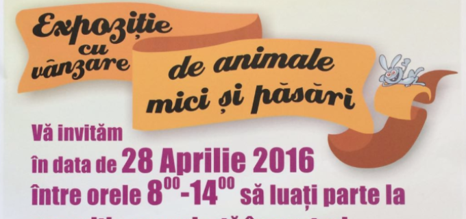 28.04.2016 – Expoziţie cu vânzare de animale mici şi păsări