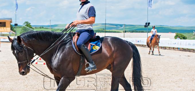 Foto: S-a dat startul competiției internaționale Salina Equines Horse Trophy. Peste 150 de concurenți înscriși!