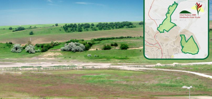Comunicat: Proiect Managementul sitului Natura 2000 Sărăturile Ocna Veche
