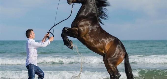 Invitat special la Salina Equines Horse Trophy: Miron Bococi va susţine un spectacol de acrobație și dresaj în libertate