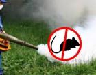 Operațiuni de dezinsecție pentru combaterea insectelor zburătoare și târâtoare, pe domeniul public al municipiului Turda