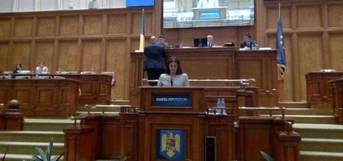 Cristina Burciu, interpelare pentru accelerarea transferului unor tronsoane de drum din Turda către CNAIR