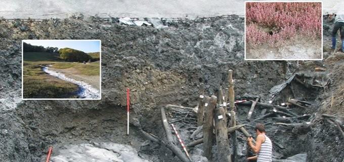 """Muzeul de Istorie Turda organizează Conferinta """"Arheologia sării în Transilvania și Maramureș"""""""