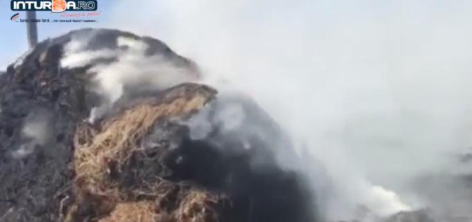 VIDEO: Incendiu la Câmpia Turzii. Deasupra flăcărilor se află linii de curent de înaltă tensiune!