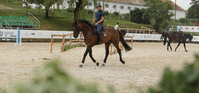 Ședințe de călărie la Salina Equines Turda! Vezi aici mai multe detalii: