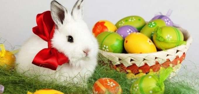 OFICIAL: Ce avem și ce NU avem voie să facem de Paște!