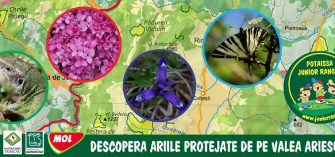 Descoperă ariile protejate de pe Valea Arieşului