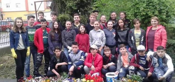 """Programul """"Fii responsabil! Fii partenerul meu!"""" la Școala Gimnazială """"Mihai Viteazul"""""""