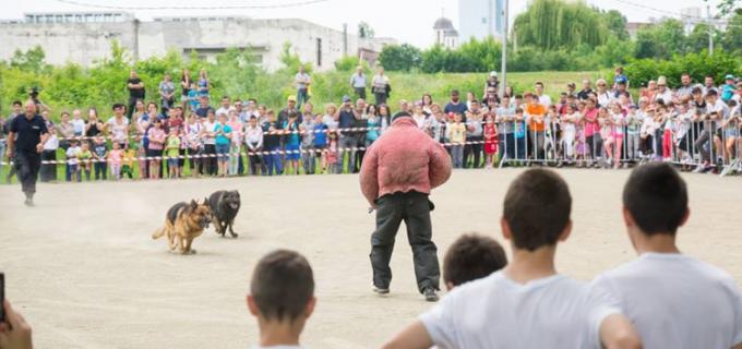 VIDEO: Exerciţii canine şi demonstraţii ale mascaților la Turda