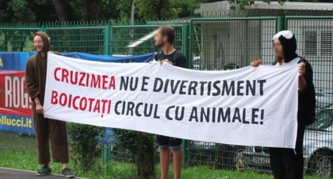Turdenii vor protesta la casieriile Circului Gärtner de lângă Solaris. În România este interzisă folosirea animalelor sălbatice în circuri!