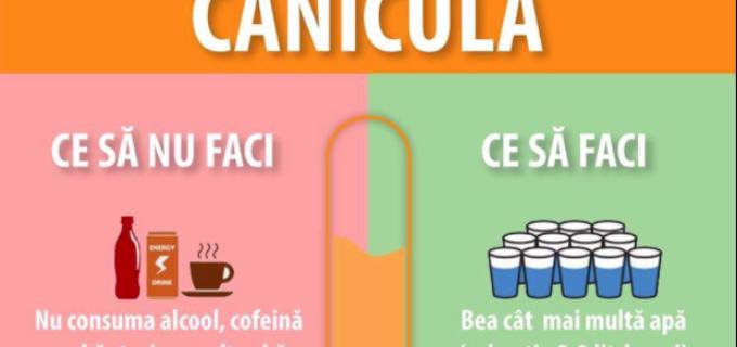Sfaturi utile împotriva CANICULEI