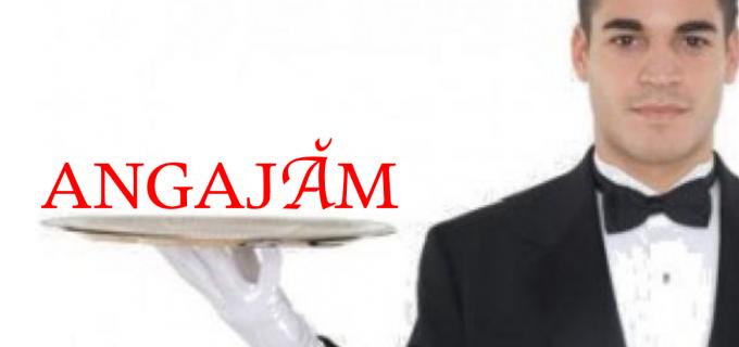 Restaurantul Castelul Prințul Vânător angajează ospătari