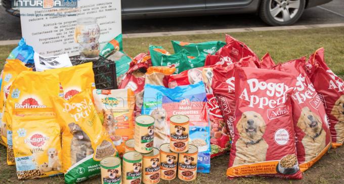 VIDEO/Foto: Turdenii au donat hrană pentru adposostul Amicii Dog Rescue