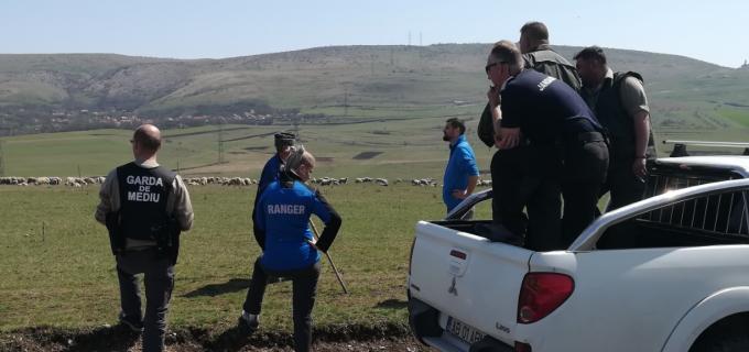 Acțiune de protejare a florei și faunei din Rezervația Naturală Cheile Turzii