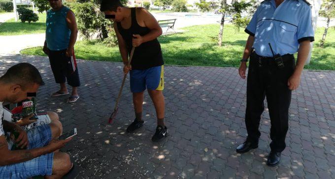 Politia Locală luptă zilnic cu lipsa de educație a unor turdeni! Sancțiuni zilnice pentru cei care aruncă cojile de semințe pe jos