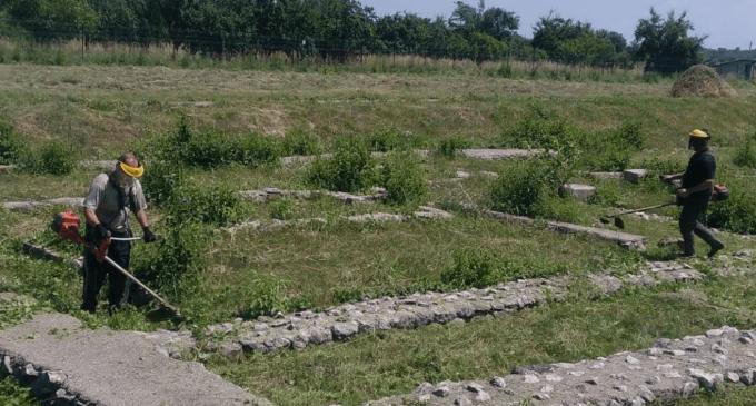 Mai multe instituții sunt mobilizate în zona Castrului Roman