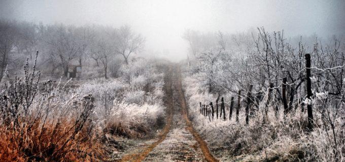 ANM: O masă de aer polar va traversa România, începând de mâine!