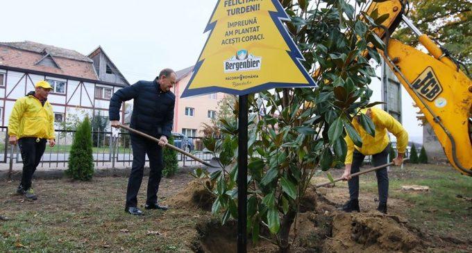 Bogdan Stelea si Bergenbier au plantat 200 de pomi ornamentali in Turda