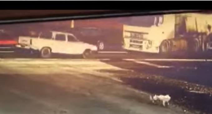 VIDEO. Momentul accidentului mortal de la Cornești a fost surprins de o cameră de supraveghere