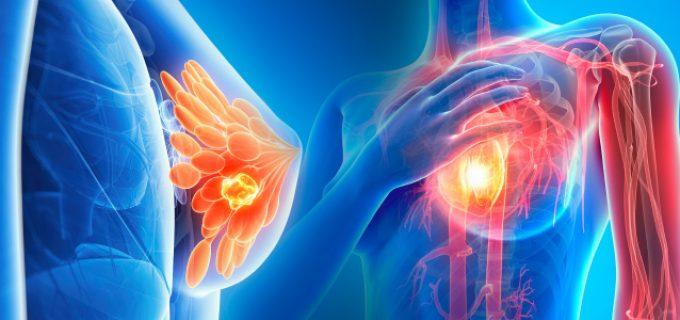 A fost descoperită celula care ar putea sta la baza unui tratament universal împotriva CANCERULUI