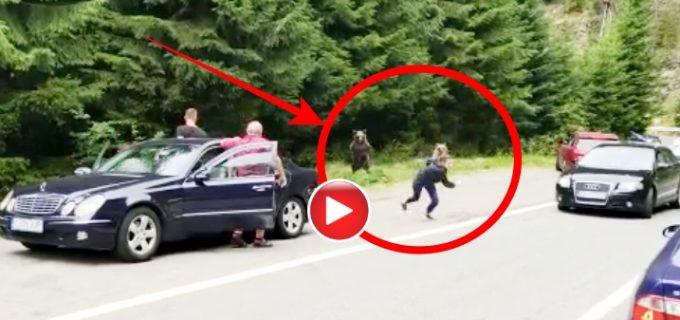 VIDEO: O femeie a fost aproape să fie sfâșiată de ursul pe care îl fotografia