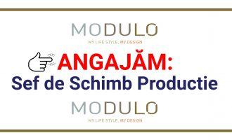 Modulo Decorative Solutions Turda angajează Sef de Schimb Productie