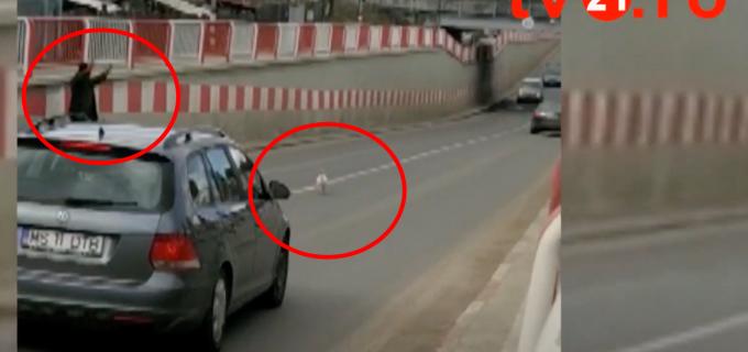 VIDEO: Zi de piață la Câmpia Turzii. Și-a pierdut găina în pasajul de la Lidl :)