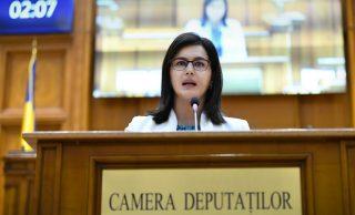Burciu Cristina: Susținerea agriculturii, o șansă importantă pentru dezvoltarea României
