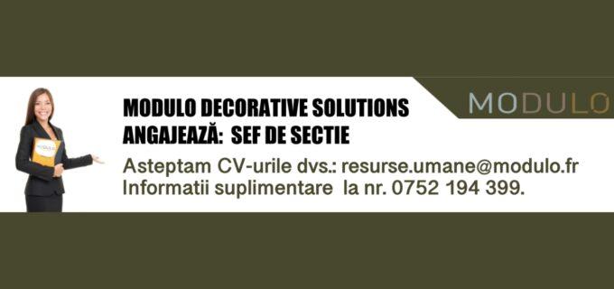 MODULO DECORATIVE SOLUTIONS, companie locală ce produce piatră decorativă caută ȘEF DE SECȚIE