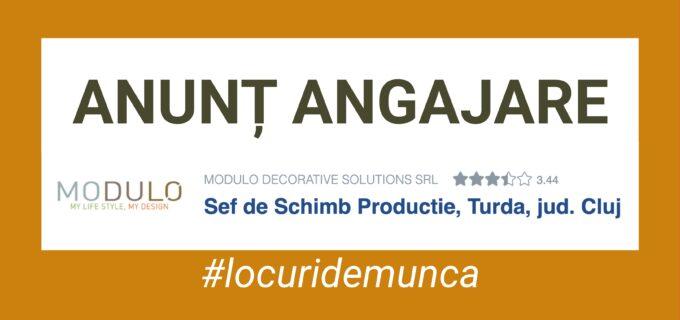 Modulo Decorativ Solutions angajează ȘEF DE SCHIMB PRODUCȚIE
